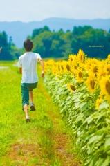夏をかける少年