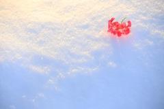 雪のステージ