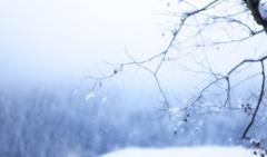 雪のしずく☆