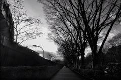 原宿・神宮前