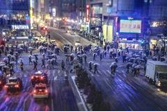 雪のスクランブル交差点(渋谷)