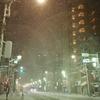 大雪2014