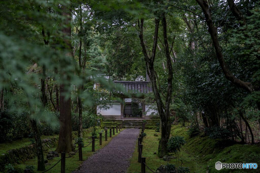 雨上がりの地蔵院