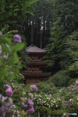 雨の岩船寺