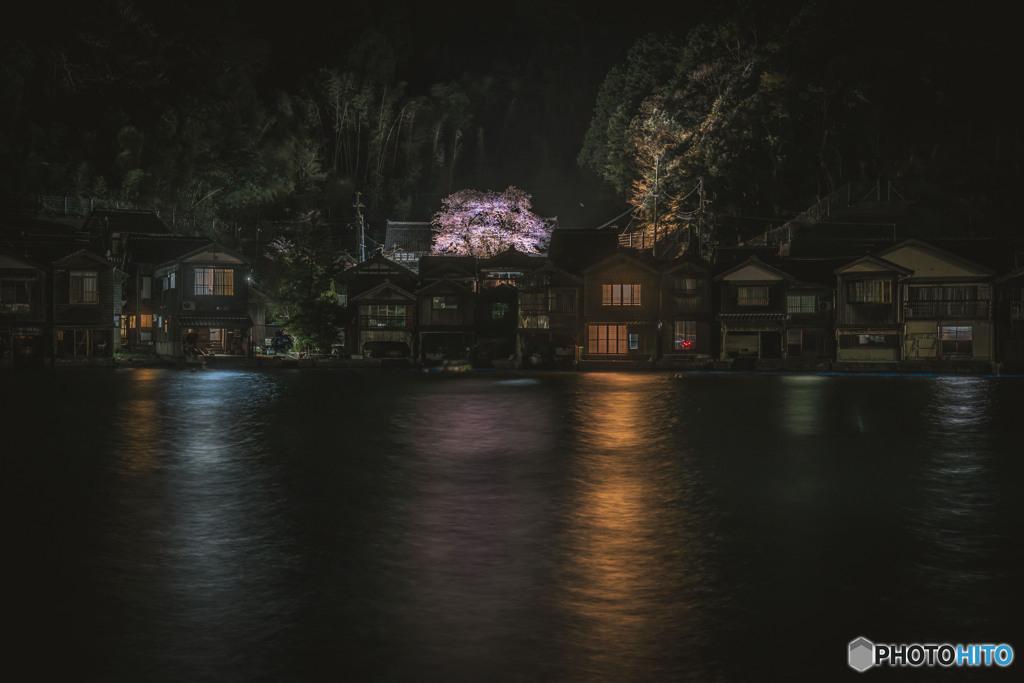 舟屋のSakura