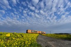 春の津軽鉄道  3