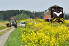 春の津軽鉄道  4