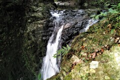 滝を接写~