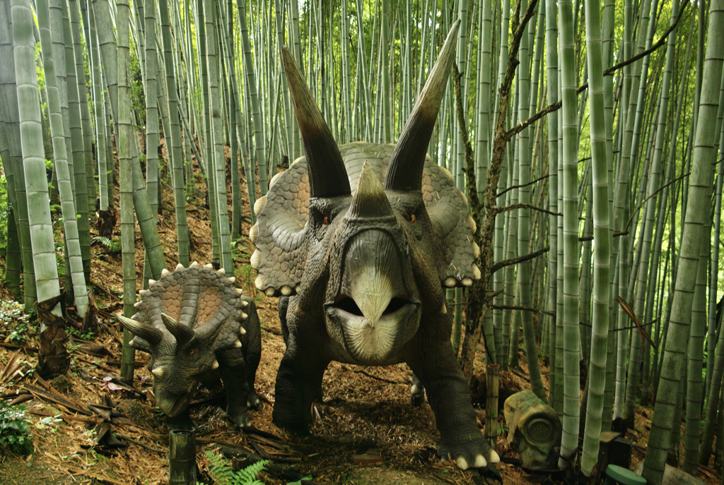 竹藪から恐竜が出た~みろくの里