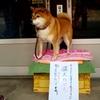 モノスゴイ猛犬に注意! (゚д゚)