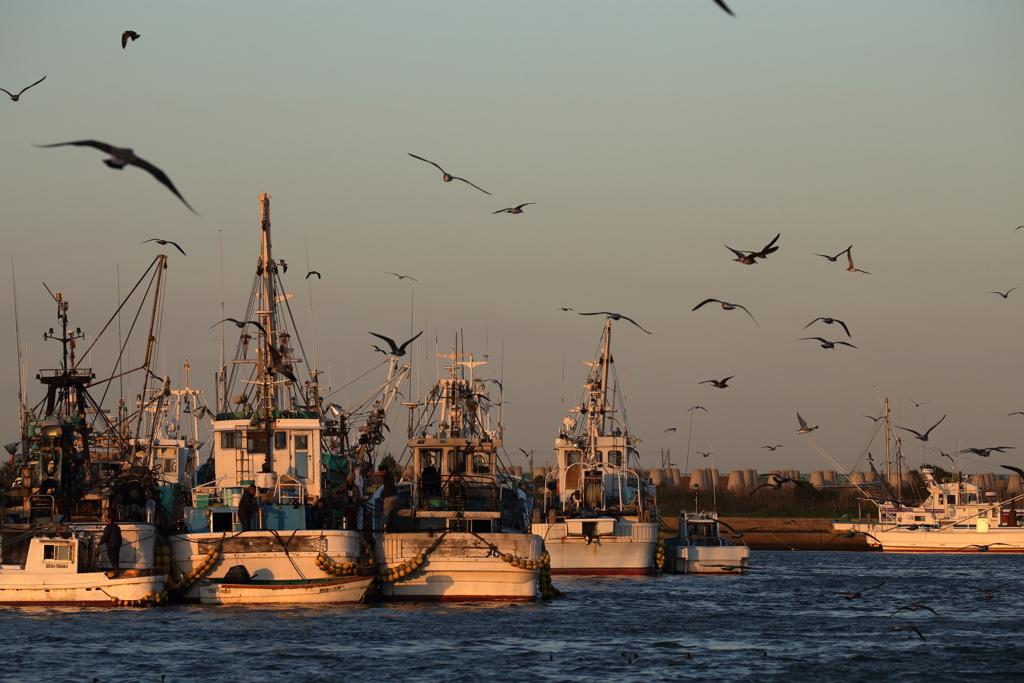 西日の漁港