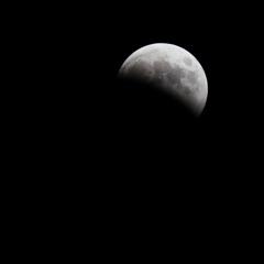 月食の日の悲劇 #10