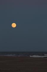月食の日の悲劇 #7