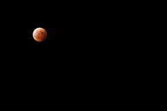 月食の日の悲劇 #13