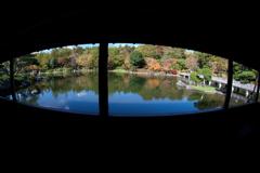 公園、日本庭園