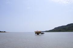 島から島へ。