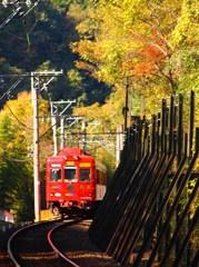 貴志川線秋景色(1)