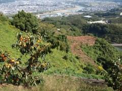 巡礼の道(4) 九度山遠景