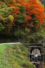 山岳列車(5)-紅葉のトンネル