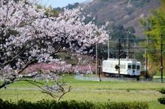 里の春(1)