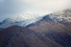 山に白いものが DSC_5123