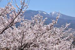 浅間山を望みながら DSC_7946