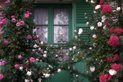 薔薇の窓辺
