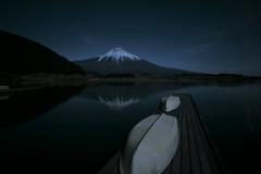 月夜のたぬき2