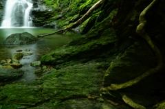 苔むす岩と滝壺