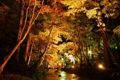 宮川夜景2
