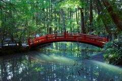 小國神社、事待池