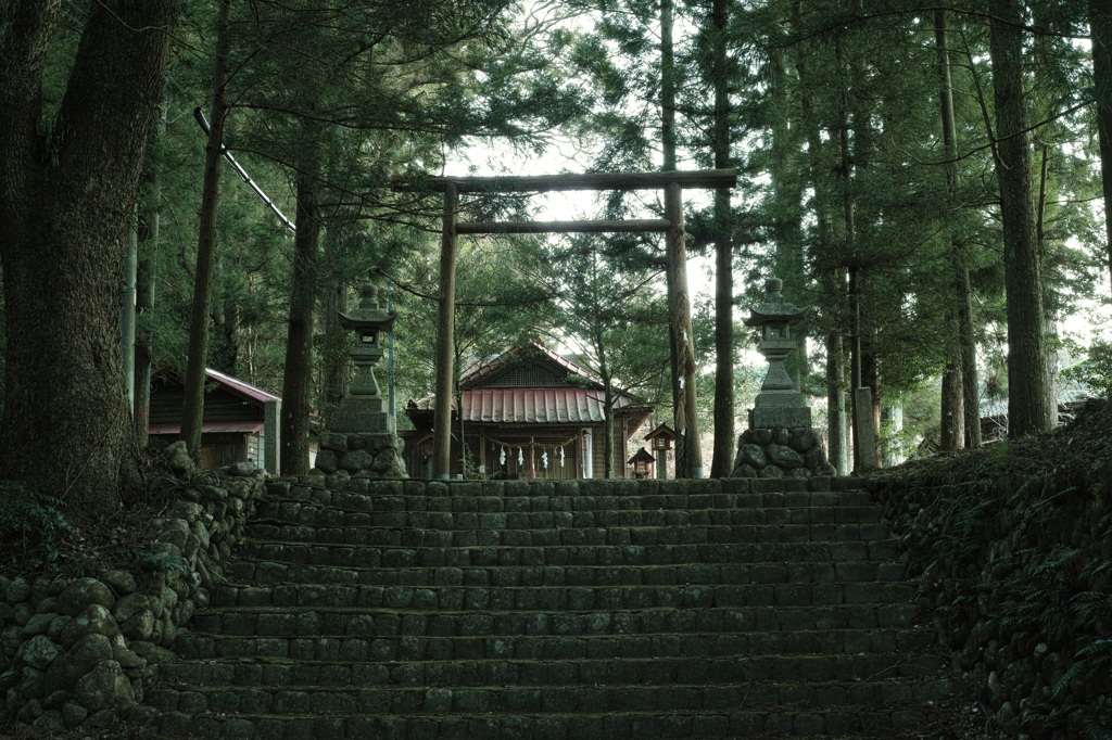 神社で一人