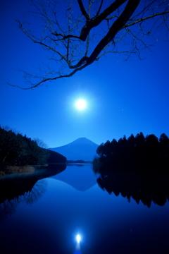 展望デッキの月