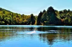 湯ノ湖の情景