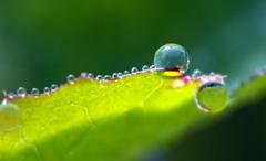 ブルーな水滴