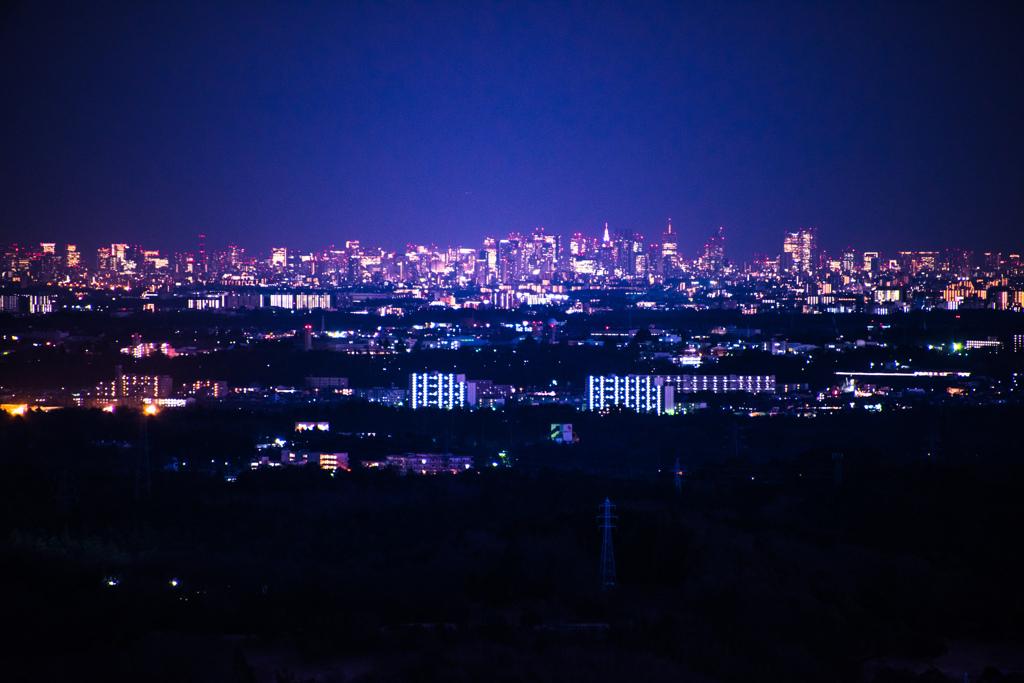 奥武蔵から都心を眺める
