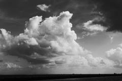 東京湾の夏雲