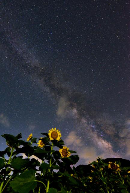 空・天体の写真(画像)・写真集 - 写真共有サイト:PHOTOHITO