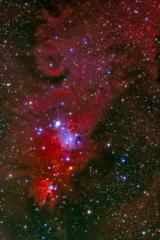コーン 星雲付近