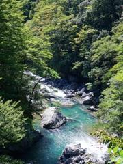 京都 山中の清流