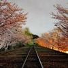 京都 蹴上鉄道の輝き