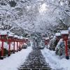 京都 鞍馬寺 雪の参道