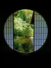 京都 芬陀院 新緑の庭園