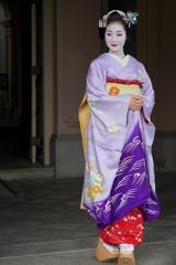 京都 京美人II