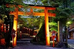 京都 貴船神社 夏のライトアップ