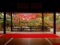 京都 妙心寺 大法院の庭園