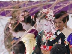 京都 北野天満宮 梅花祭野点大茶湯