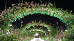 rose arch at night - IMG_2873
