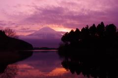 紫と朱、そして橙
