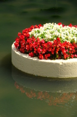 a cake of flowers